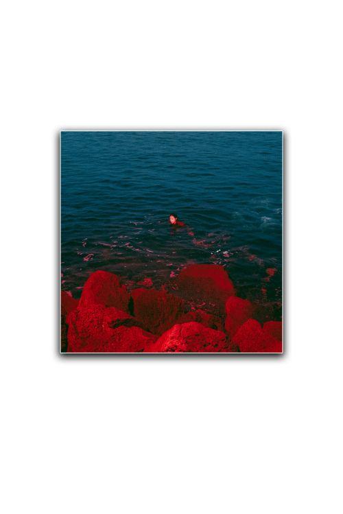 TRANQUILIZE - EP (Vinyl) + INCENSE + TRANQUILIZE BLACK TSHIRT + LIMITED EDITION PRINT + DIGITAL DOWNLOAD by TELENOVA