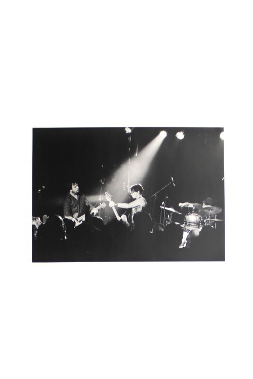 Stage Photo B & W by Baby Animals